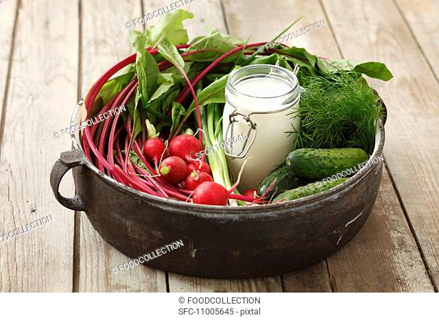 Ingredients for cold beetroot soup beetroot, gherkins, radishes, dill, kefir