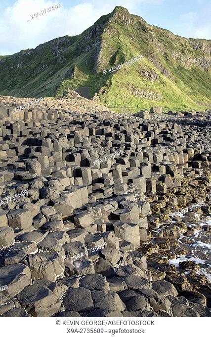 Giants Causeway; County Antrim; Northern Ireland, UK