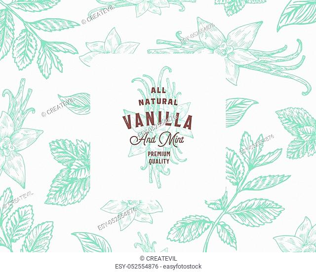 Hand Drawn Mint and Vanilla Vector Background Pattern. Abstract Spices Sketch Card or Cover Template with Classy Retro Typography and Emblem. Isolated
