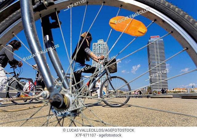 Barcelona:Bikes in Marina street