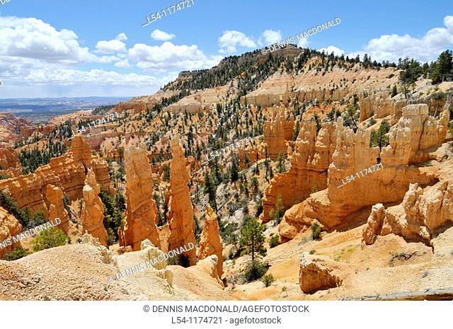 Vista and Hoodoos Bryce Canyon National Park Utah