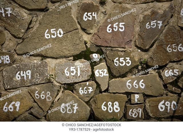 Stones numbered by archaeologists in the Zapotec city of Monte Alban, Oaxaca, Mexico