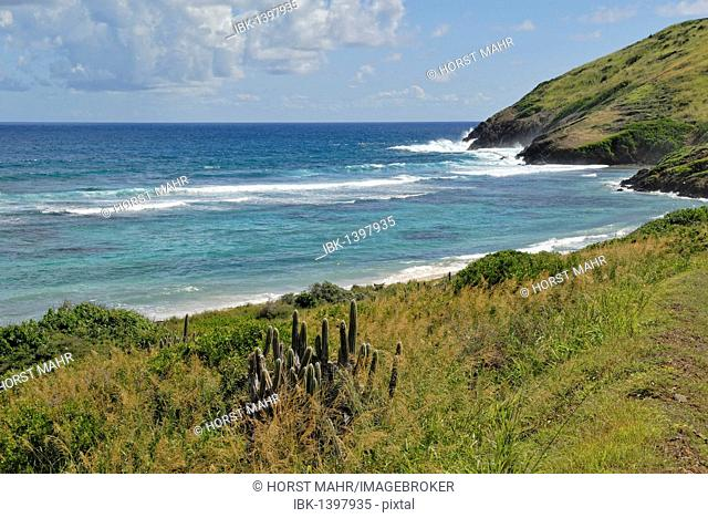Coastal formation at Point Udall, the easternmost point of the island of St. Croix and the USA, U.S. Virgin Islands, USA
