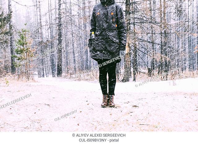 Woman standing in forest in winter, Ural, Sverdlovsk, Russia