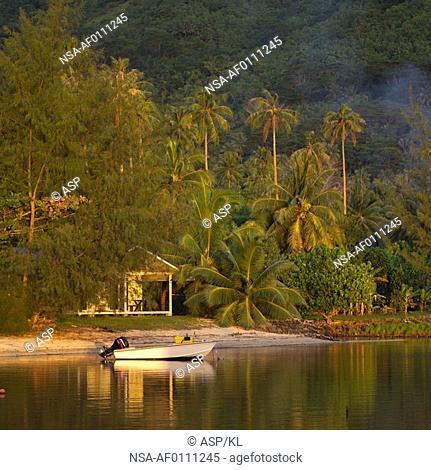 Motor boat at shore at Moorea in Tahiti