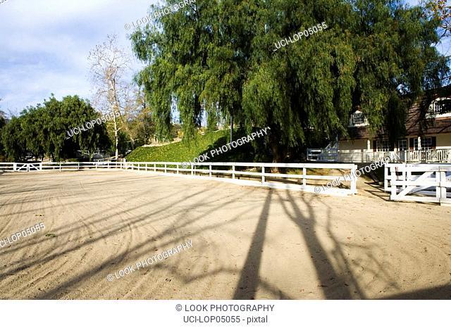 Large Dirt Horse Riding Arena