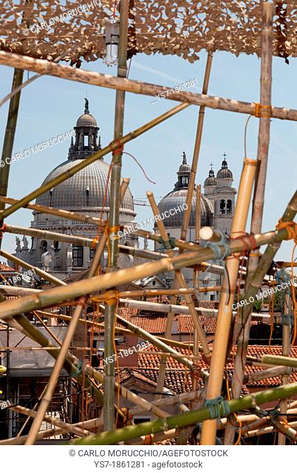 Big Bambu work by Mike & Doug Starn, Venice Biennale, Venice, Italy