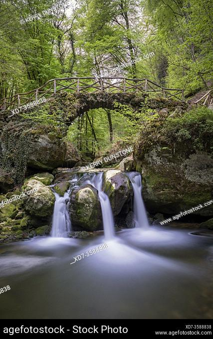 Europe, Luxembourg, Grevenmacher, Mullerthal Trail, Schiessentumpel Waterfall