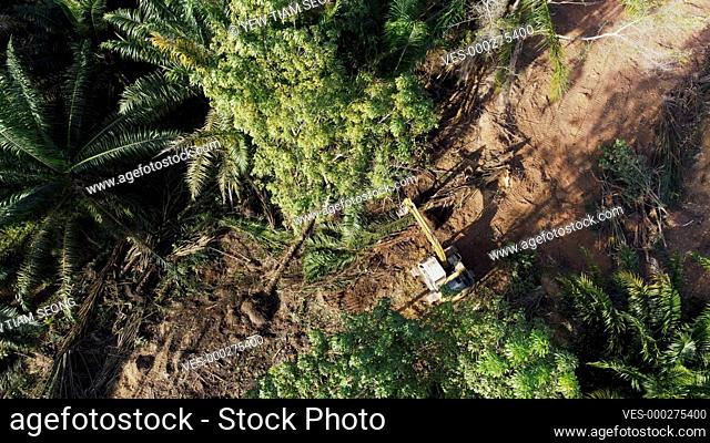 Aerial view excavator clear the land in green forest at Malaysia