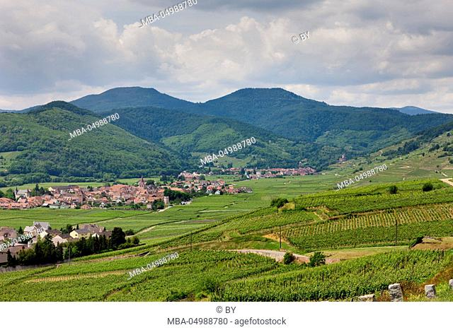 View at Kientzheim and Kaysersberg, Alsace