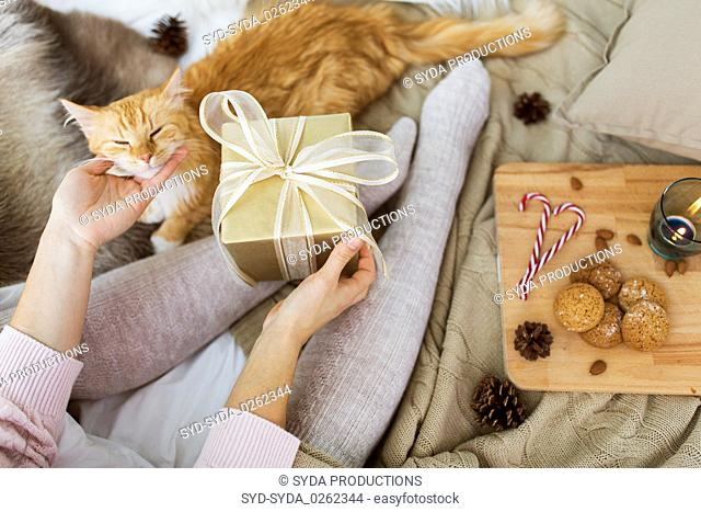 close up of woman with christmas gift and cat