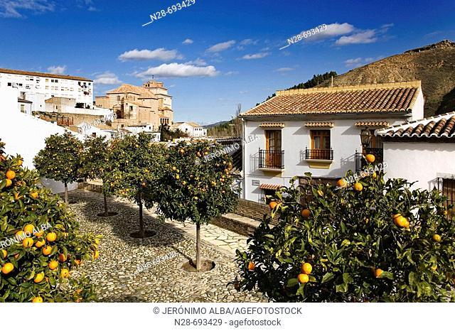 Íglesia del Carmen'. Malaga province. Andalusie. Spain