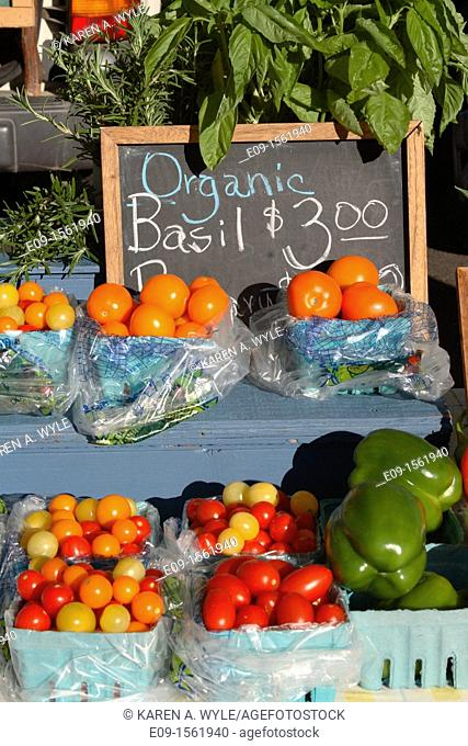 display at farmers' market with cherry tomatoes in baskets in several colors, full-size tomatoes, large green peppers in basket, bunches of basil