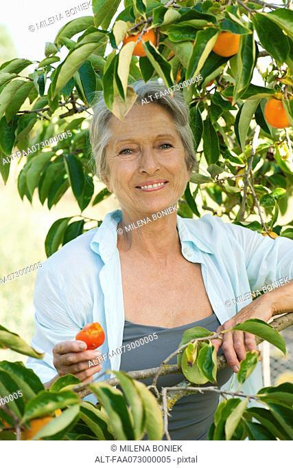 Senior woman smiling under persimmon tree, portrait
