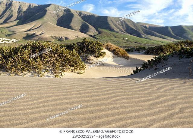 Features sand dunes of the bay. Famara, Lanzarote. Spain