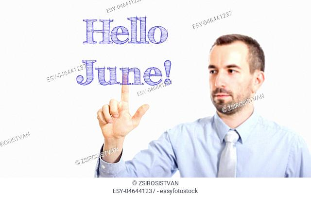 Hello June Young businessman with small beard touching text - horizontal image