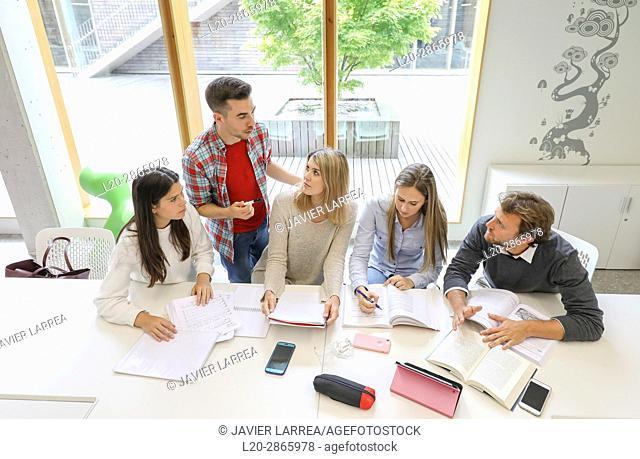 Teacher with group of students doing a joint work, University of the Basque Country, San Sebastian, Donostia, Gipuzkoa, Spain