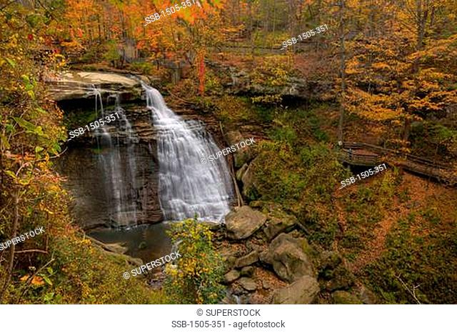 Waterfall in a forest, Akron, Ohio, USA