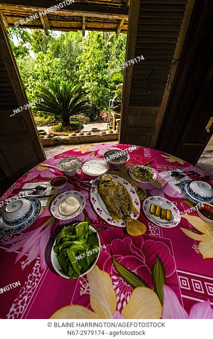 Lunch of fish and fresh vegetables, near Cai Lay, Mekong Delta, Vietnam