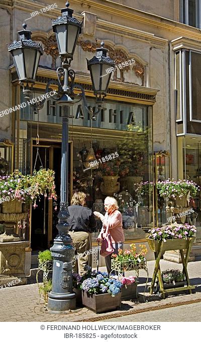 Váci Utca, shopping street, Art Nouveau flower, Budapest, Hungary, Southeast Europe, Europe