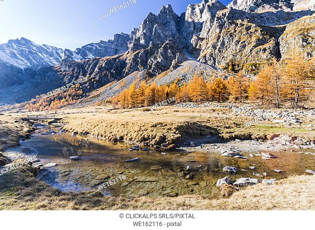 The rio Buscagna at the entrance of Val Buscagna, Alpe Devero, Antigorio valley, Piedmont, Italy