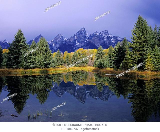 Teton Range reflecting in pond, fall colors, Schwabacher Landing, Grand Teton National Park, Wyoming, USA