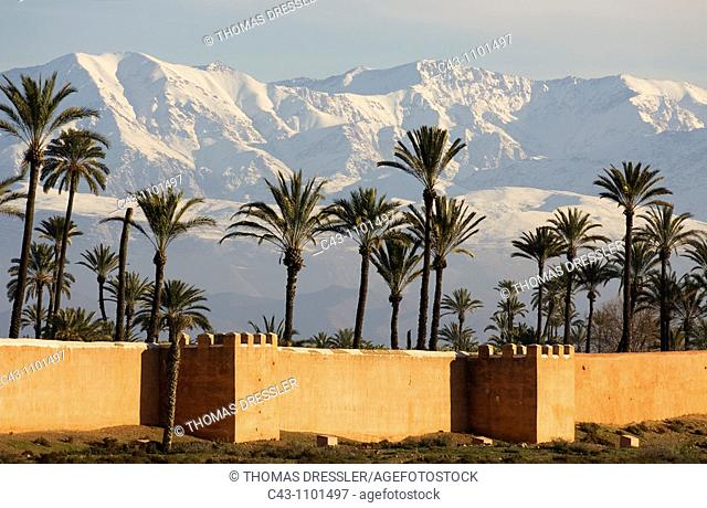 Morocco - The ramparts of Marrakesh against the background of the snow-capped High Atlas mountains  Photographed in January