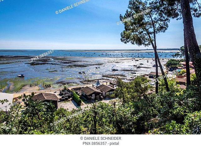 France, Gironde, Arcachon Bay, Cap-Ferret, La Pointe aux Chevaux at low tide and Piquey oyster village