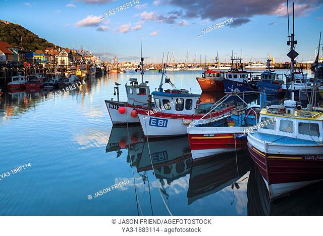 England, North Yorkshire, Scarborough  Boats moored in Scarborough Harbour, a working fishing harbour in North Yorkshire