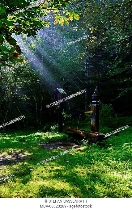 Theresienbrunnen (fountain)
