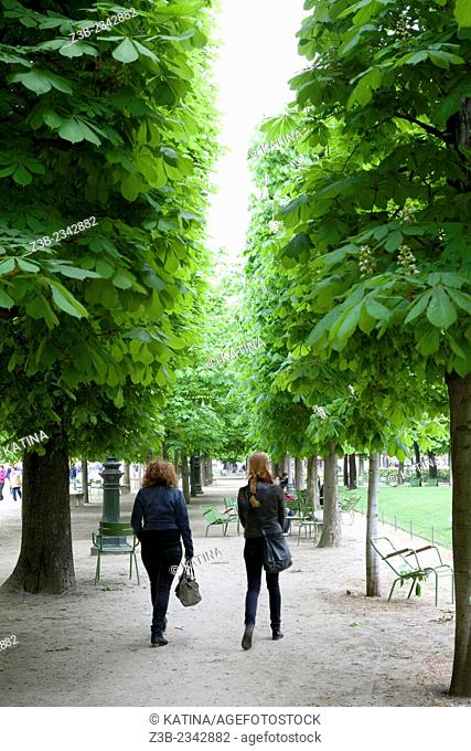Friends walking in Tuileries Gardens (Jardin des Tuileries) in spring, Paris, France, Europe
