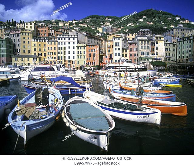 Fishing Boats, Camogli, Ligurian Riviera, Italy