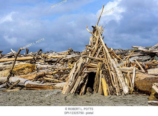 Beach dwellings pop up along the Oregon Coast; Bandon, Oregon, United States of America