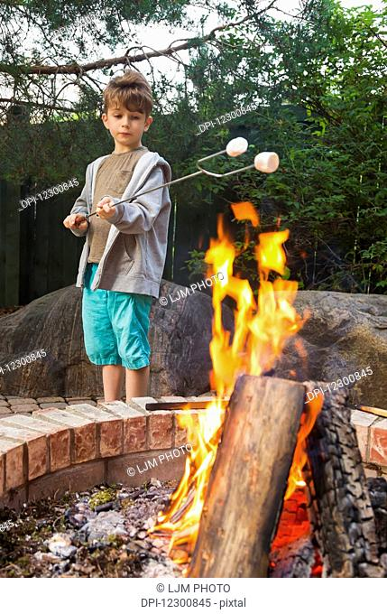 Young boy toasting marshmallows on an open fire in a backyard; St. Albert, Alberta, Canada