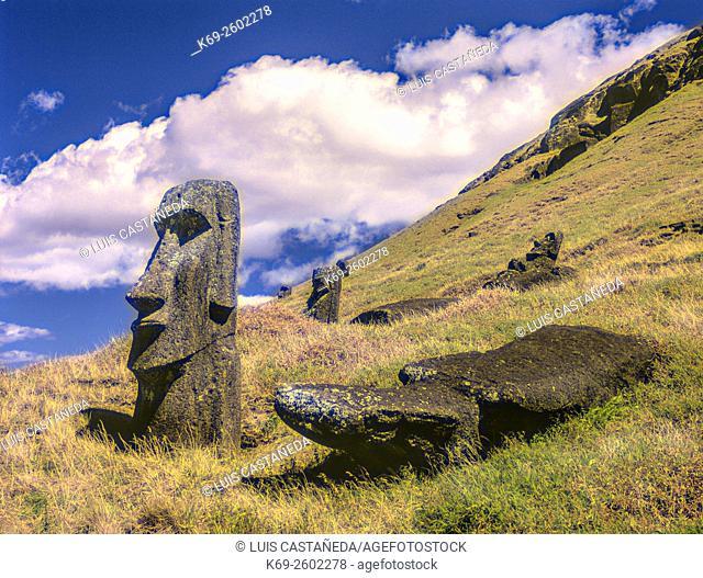 Moais Quarry. Rano Raraku Volcano. Easter Island, Chile