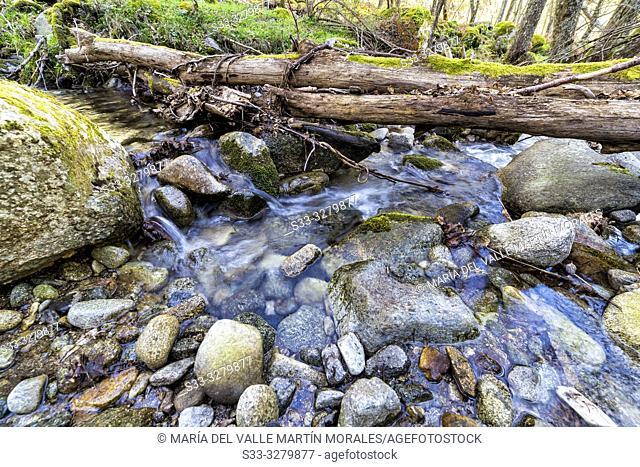Solana Toro stream in Iruelas Valley. Avila. Spain. Europe