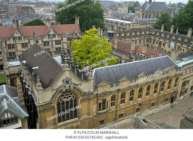 View of city houses and colleges, St Mary's Church, Oxford University, Oxford, Oxfordshire, England, june