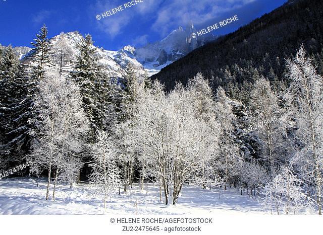 Winter landscape, Les Drus, Chamonix, Alps, France