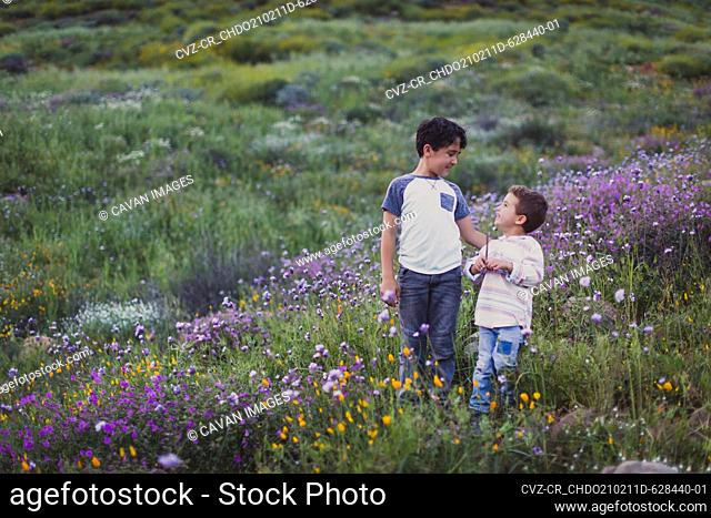 Two brothers talking to each other on a field of wild flowers