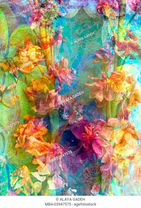 abstract multicolor floral montage photographic layer work