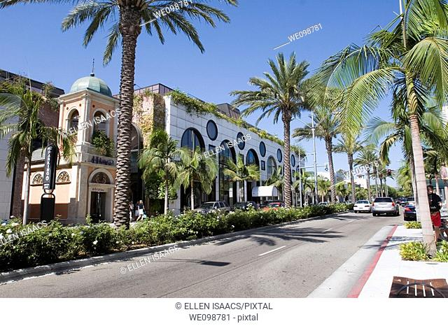 Street scene on Rodeo Drive, Beverly Hills, Los Angeles, California  Palm trees line both sides of the street and the landscaped center divide