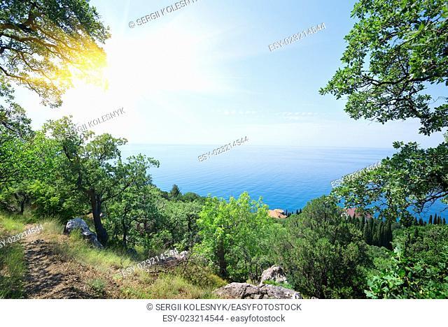 Sun and clear sky over the blue sea