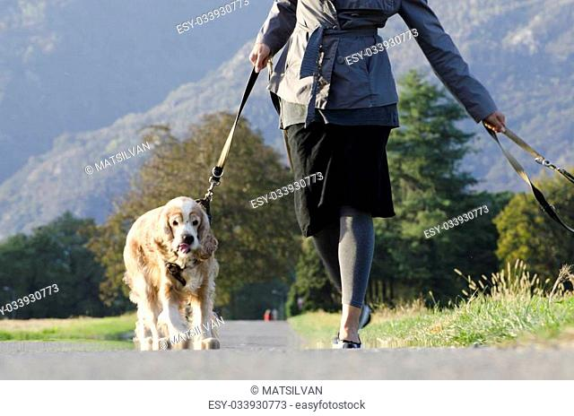 Woman walking with her dogs