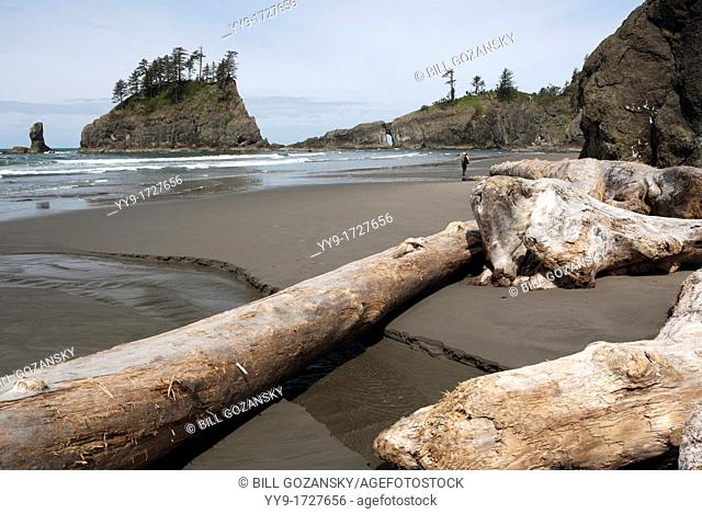 Second Beach - La Push, Washington, USA
