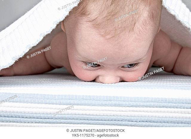 Four Month old Baby under a Bed Sheet