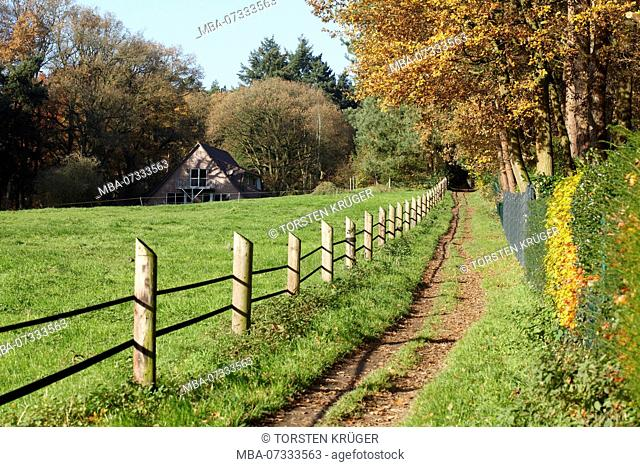 Meadow path with wooden fence in autumn, in the background farmhouse, Worpswede, Lower Saxony, Germany, Europe