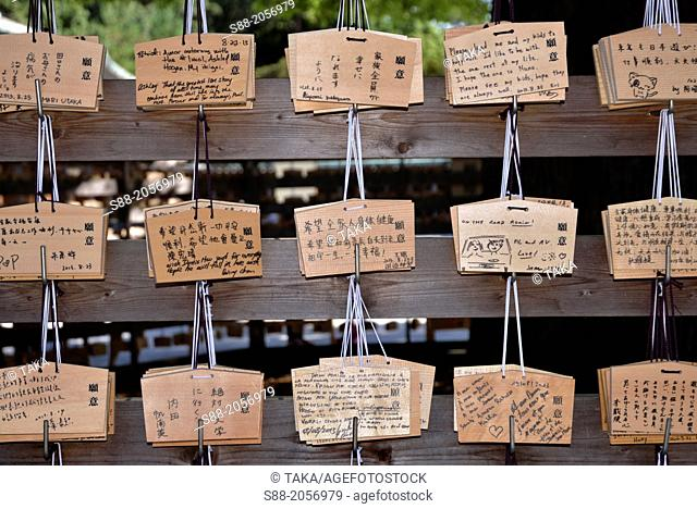 People write wishes on the little bored and pray for God at Meiji shrine in Tokyo