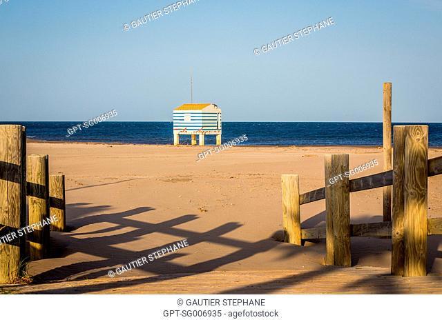 CHALETS BUILT ON PILES, CHALETS BEACH, GRUISSAN, AUDE (11), FRANCE