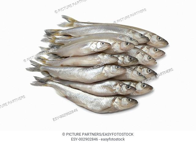 Fresh European smelt fishes on white background