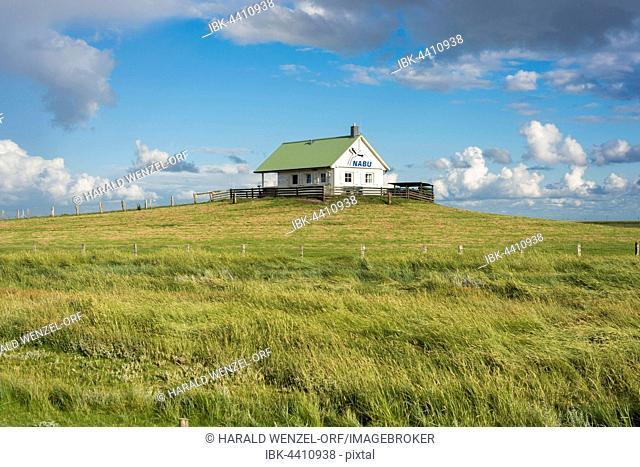 House of the German Society for Nature Conservation, NABU, embankment foreland Hamburger Hallig, nature reserve, national park Wadden Sea